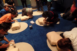 Basic Life Support (BLS) Training (1 day)